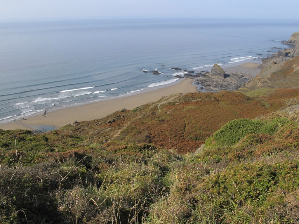 Coast Path Walk 2011