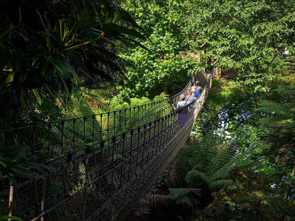 Lost Gardens of Heligan, Cornwall